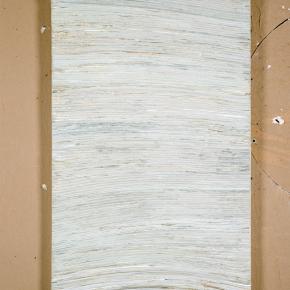 Wall #4a, 2009, 60cm x 91cm, Pintura, yeso, papel montado en panel de madera