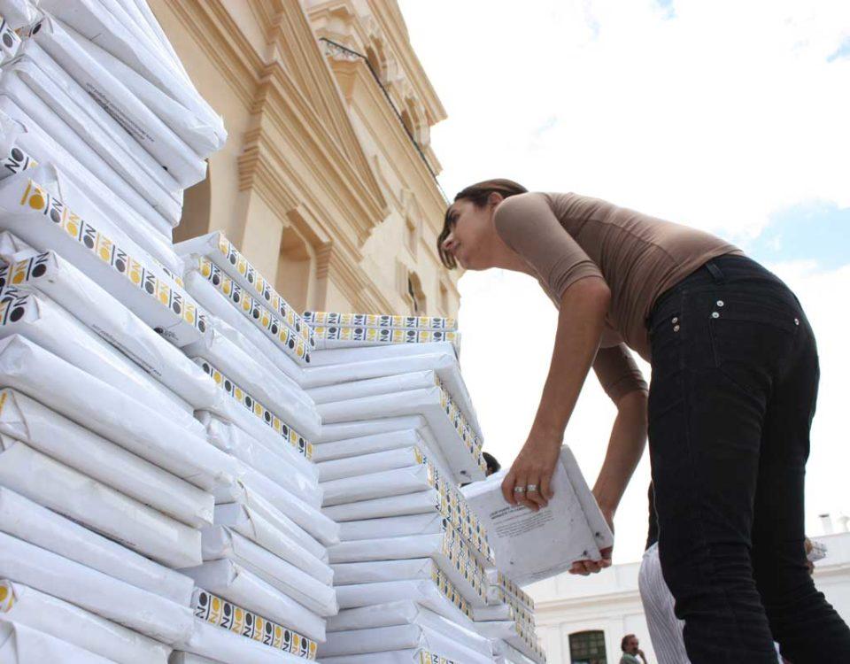 La demolición de todos, 2010 (Baldosas envueltas de la Catedral)